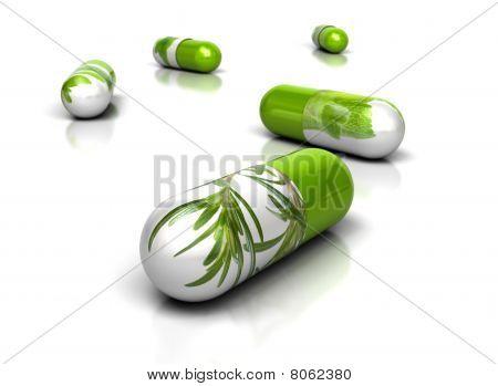 Herbal Concept - Herbal Medicine