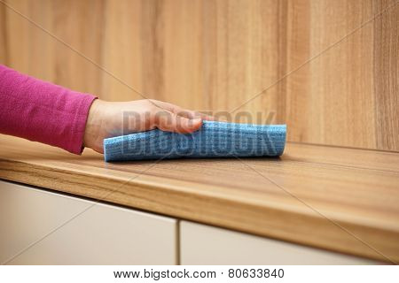 Cleaner Cleans Furniture In The Living Room