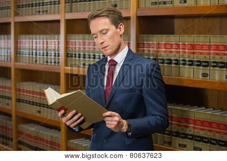 Handsome lawyer in the law library at the university