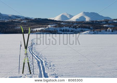 X-country Ski Winter Sport Concept
