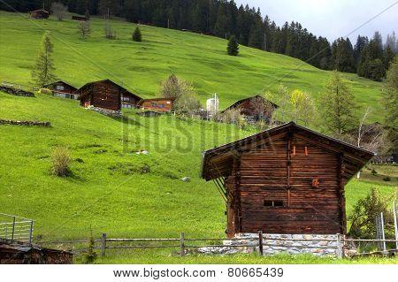 Hill Side View In Switzerland