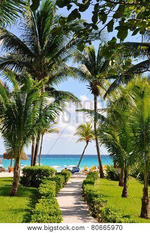 Resort coast of the azure sea.