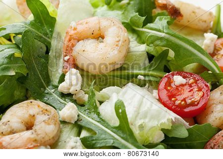 Fresh Gourmet Seafood Salad With Shrimps, Greens, Cherry Tomatoes, Cheese