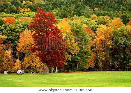 Vermont Landscapes
