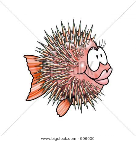 a nice pink ball fish with aculei poster