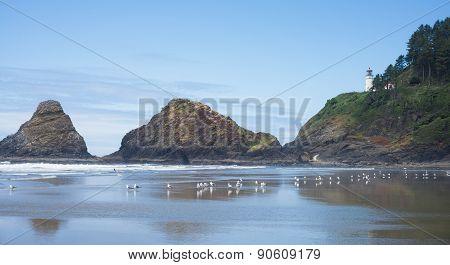 The Beach At Heceta Head