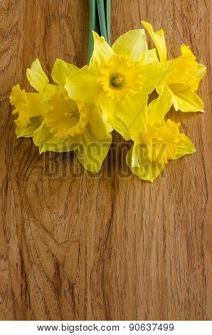 Jonquil Flowers