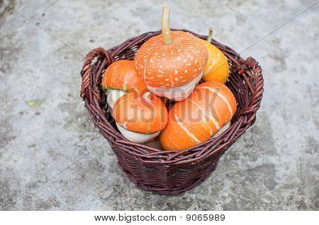Looking Down On A Wicker Basket Full Of Orange Decorative Pumpkins (cucurbita Pepo)