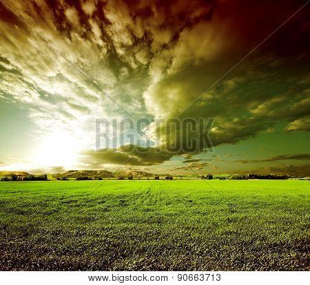 Sunset green fields landscape.