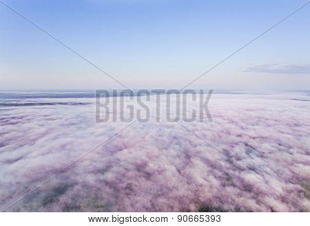 Morning Pinkish Fog
