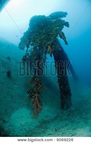 Propeller of a shipwreck