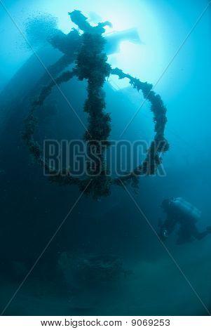 Scuba Diver Exploring The Shipwreck, The El Arish