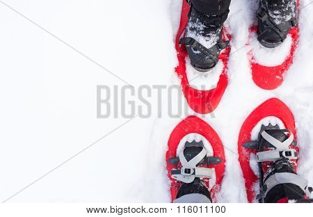 Legs in snowshoes.