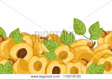 Apricot isolated on white background. Apricot fruit plants and leaves. Organic fruit. apricot  vector. Fruit for apricot juice. Ripe apricot composition. Apricot with green leaves.