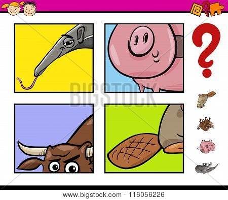 Educational Task With Animals