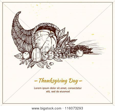Rawn Vector Illustration - Thanksgiving Day. Cornucopia