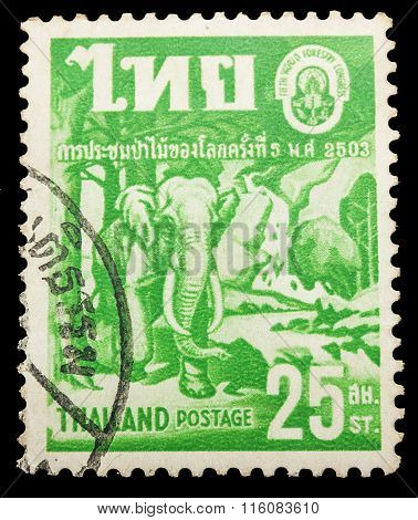 Thailand - Circa 1960: Old Stamp Features The 2503 Annual Meeting Of The World's Forests With Forest