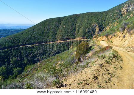 Mt Baldy Hiking Trail