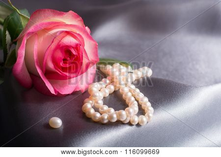 Pink rose with pearl on silk gray background