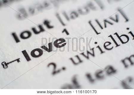 Close up of love entry in dictionary poster