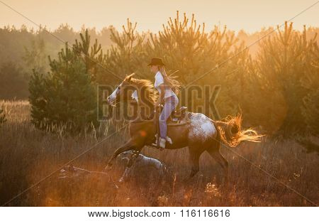 Girl Riding On The Appaloosa Horse