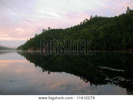 North American Landscape