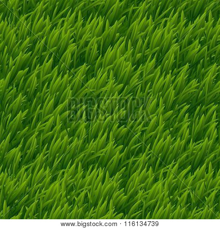 Green grass vector seamless texture