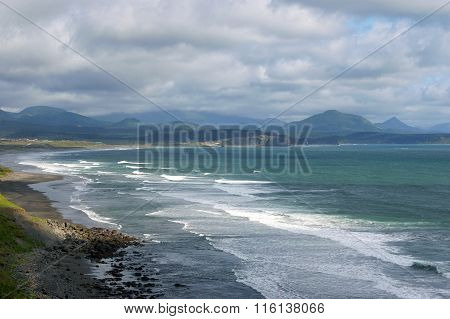 Coast  island Kunashir