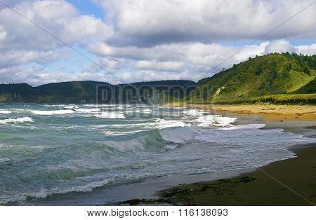 Stormy sea at island Kunashir