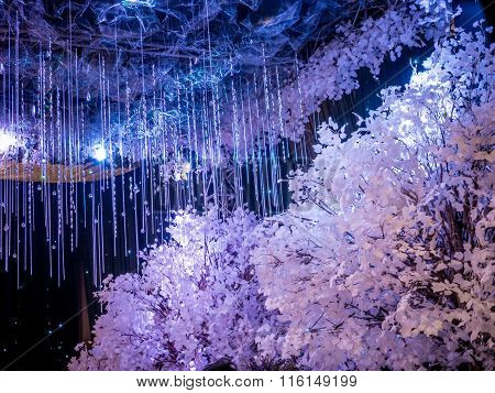 White Winter Wedding Decoration in Black Ballroom