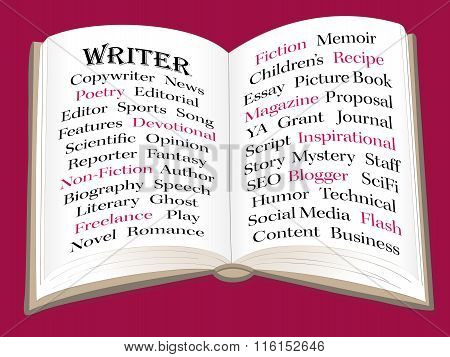 Writer Infographic