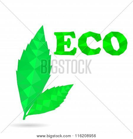 Green Leaves eco