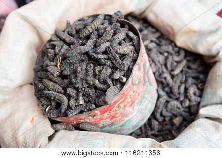 Smoked Silkworms, Burkina Faso