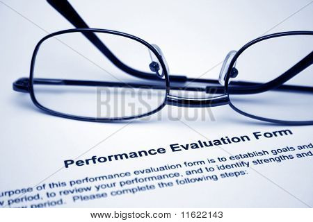 Performance evaluation form