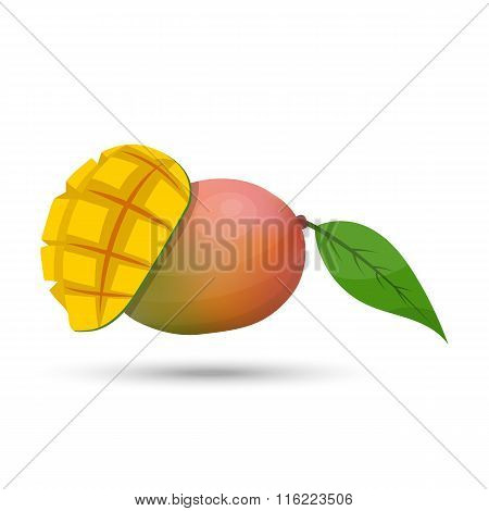 Vector mango on white background