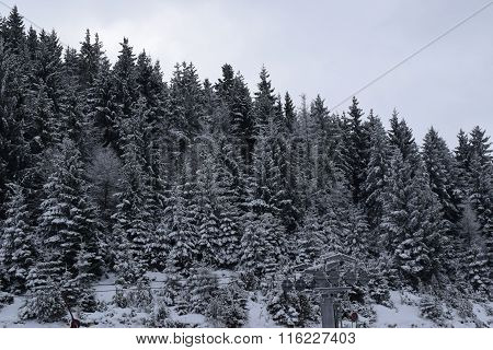 Wide landscape of mountains and forests covered with heavy snow