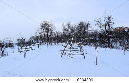 Small orchard in the middle of the winter under heavy snow