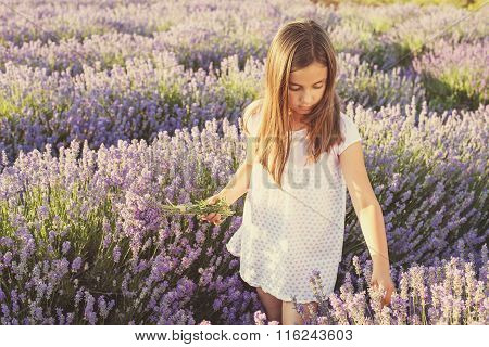 Little Girl In A Field Of Lavender