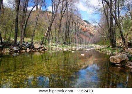Oak Creek Canyon In Spring