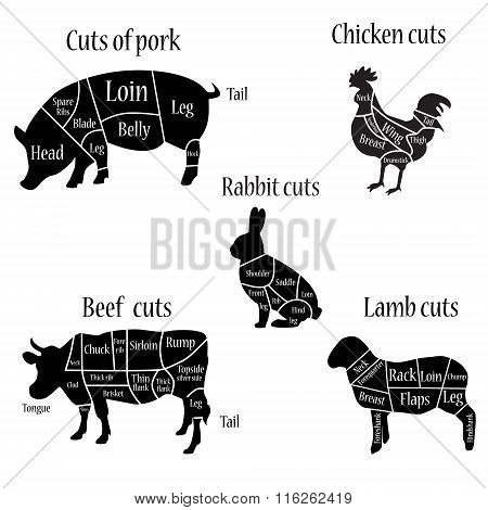 Butcher Chart Diagramm