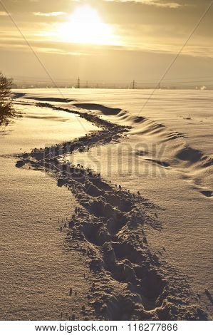Footsteps on the snow in flat area