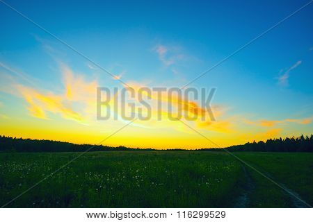 Beautiful Yellow - Orange Sky At Sunset In  Field .