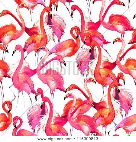 Watercolor Flamingo bird. flamingo and tropical nature watercolor pattern Flamingo Bird Background.