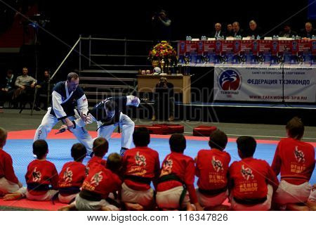 ST. PETERSBURG, RUSSIA - OCTOBER 17, 2015: Demonstration performance of St. Petersburg Hapkido Federation during the martial arts festival Baltic Sea Cup in Sibur Arena
