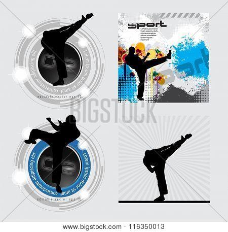Sport. Karate illustration