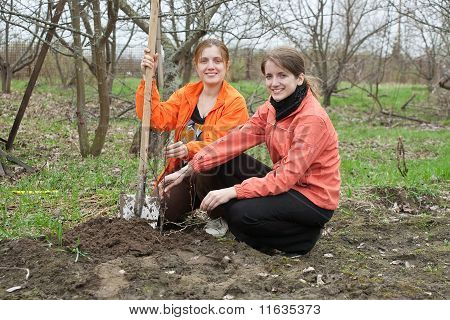poster of Two young women working with shovel in orchard