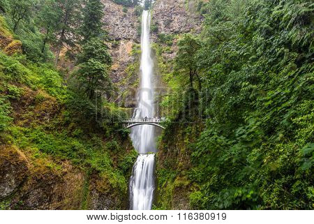 Famous Multnomah falls in Columbia river gorge Oregon.