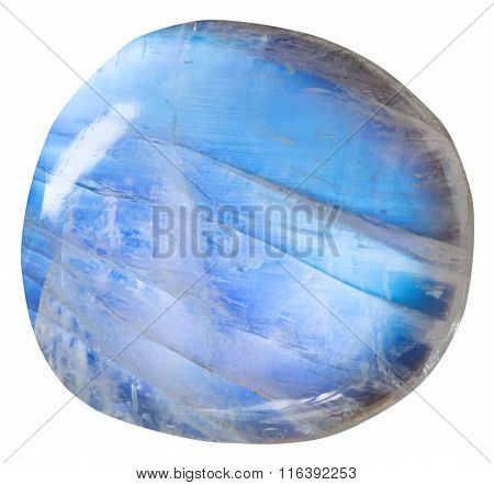 Tumbled Blue Moonstone (adularia) Mineral Gem