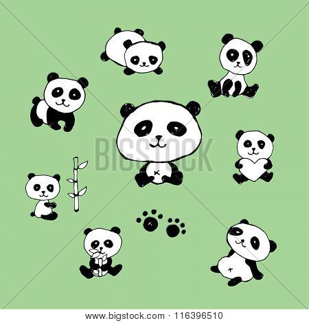 Cartoon Panda Doodles / Drawing