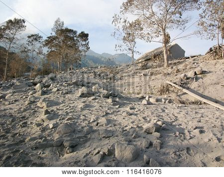 Volcanic ash covers the landscape after the volcanic eruption of Mount Merapi, Java, Indonesia
